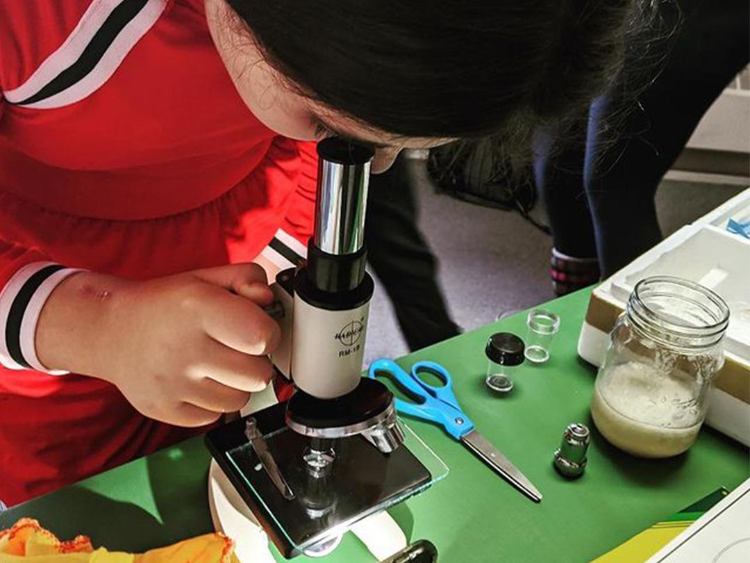 LAMA Tutoring Kid Microscope 001